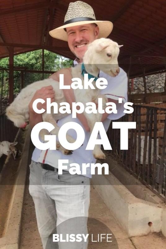 Lake Chapala's GOAT Farm