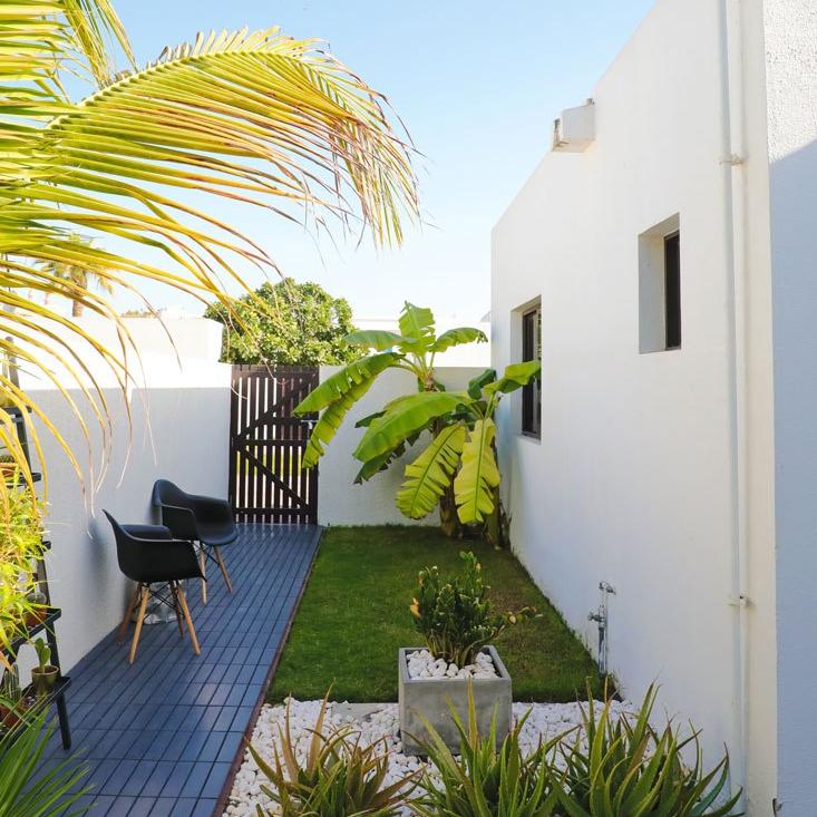tropical-plants-dubai-garden