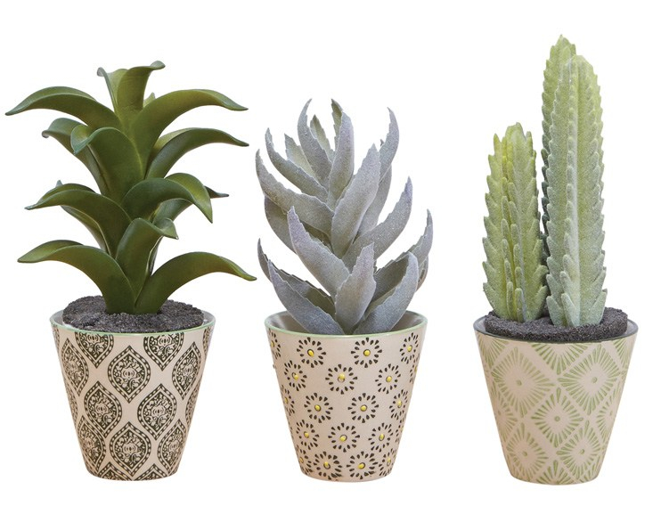 Namshi, Sass & Belle 3 Pack Mini Ria Planters AED70