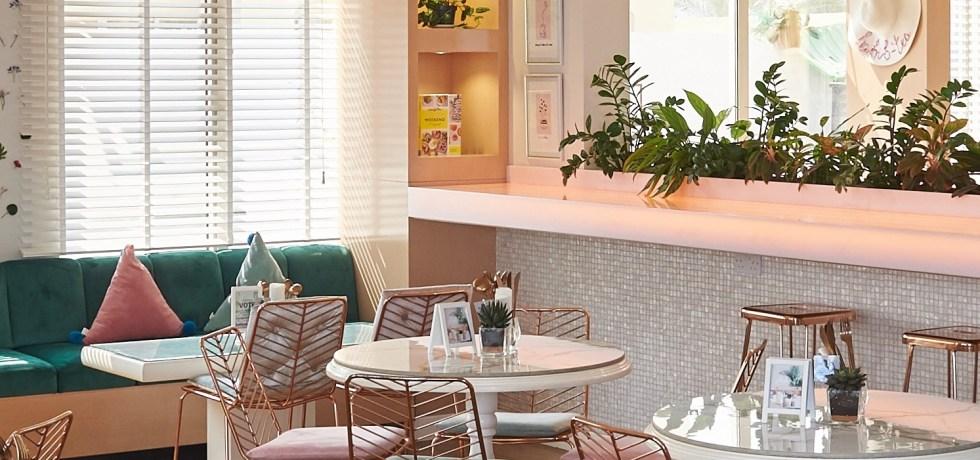 Tania's Teahouse interiors