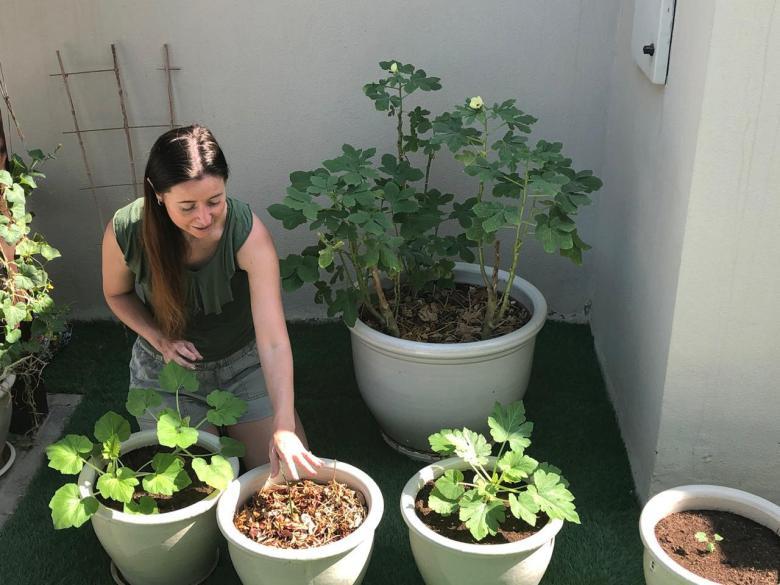 The Homegrown Gardener
