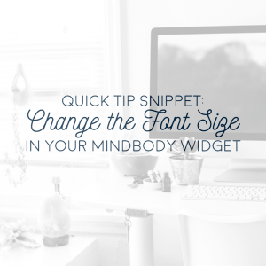 quick tip snippet change the font size in your mindbody widget