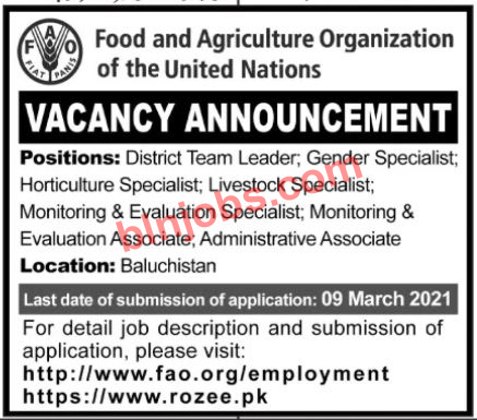 Food and Agriculture Organization Balochistan Jobs 2021
