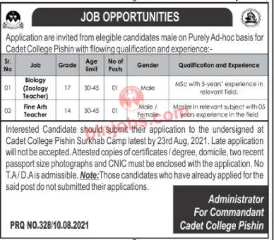 Jobs in Cadet College Pishin 2021