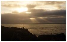 Mar de Tasmània_Punakaki_4