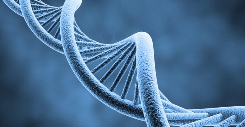 Cryptocurrency and Wonders of Genetic Engineering