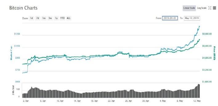bitcoin 8000