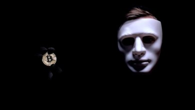 Crypto Fraud Exposed Millions of Users Saved From BitPay's Duplicate