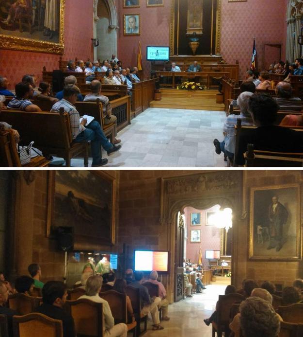 Consell de Mallorca (12-VI-2015)