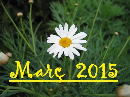 """""""El Març té trenta-un dies..."""" (meteorresum de Març del 2015)."""