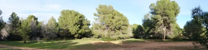 Panoràmica agafada passejant pel bosc de La Vallesa (situat entre el Camp de Túria i L'Horta), 22/11/2015, 17:25 h.
