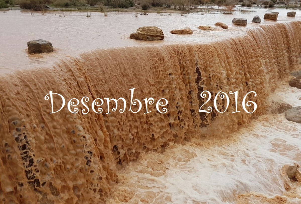 """Si pel Desembre plou, bon any nou"". Resum meteorològic de Desembre, 2016."