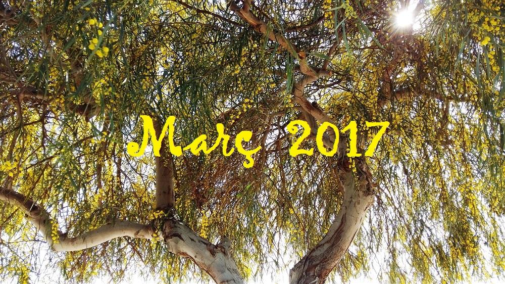 """Març, marcer, sol carasser"". Resum meteorològic de Març, 2017."