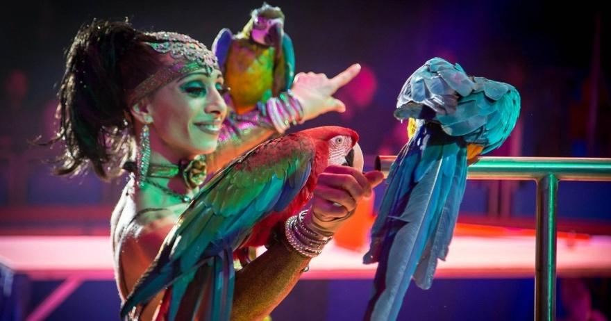 El circ amb animals torna al País Valencià