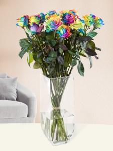 20 Regenbogen Rosen | Rosenstrauß online bestellen | Rosenversand Surprose.de