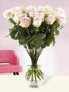 20 zachtroze rozen - Sweet Revival| Rozen online bestellen & versturen | Surprose.nl