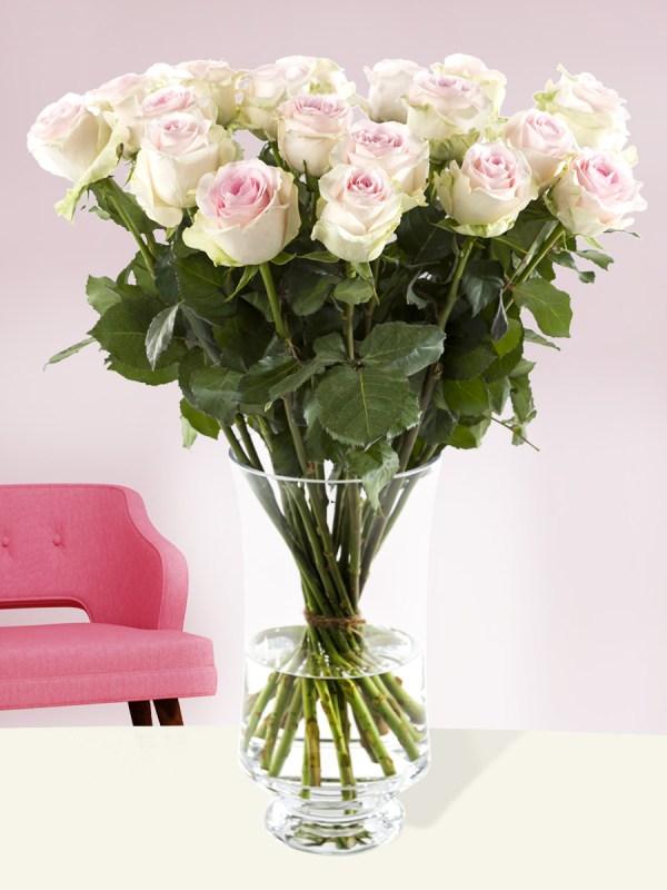20 zachtroze rozen - Sweet Revival  Rozen online bestellen & versturen   Surprose.nl