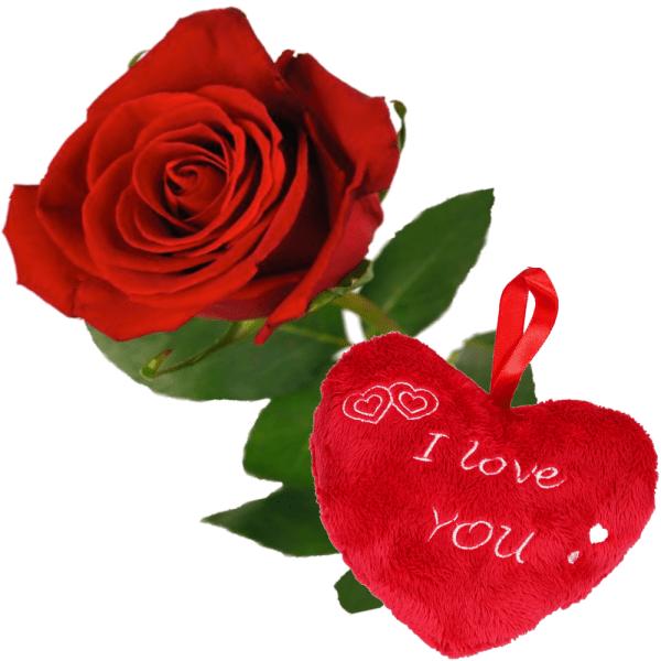 1 Rode roos bestellen bestellen of bezorgen