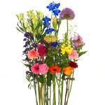 Bonte pluk bloemen om zelf te schikken bestellen of bezorgen