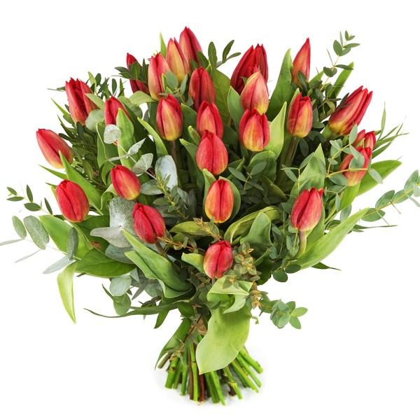 Rode tulpen bestellen of bezorgen