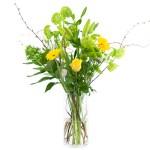 Plukboeket geel/wit bestellen of bezorgen online