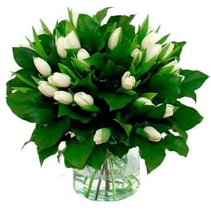 Boeket witte tulpen (NIET LEVERBAAR IN VERBAND MET SEIZOEN) bestellen of bezorgen online