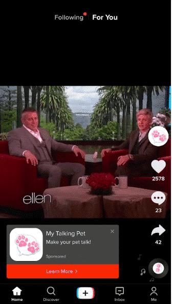 Il mio annuncio Talking Pet TikTok
