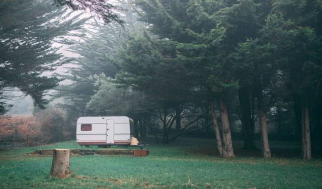 RV trailer parked in the woods.