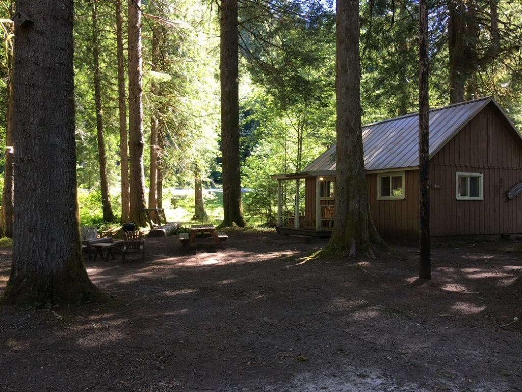 cabin in the forest at Mounthaven eco-resort