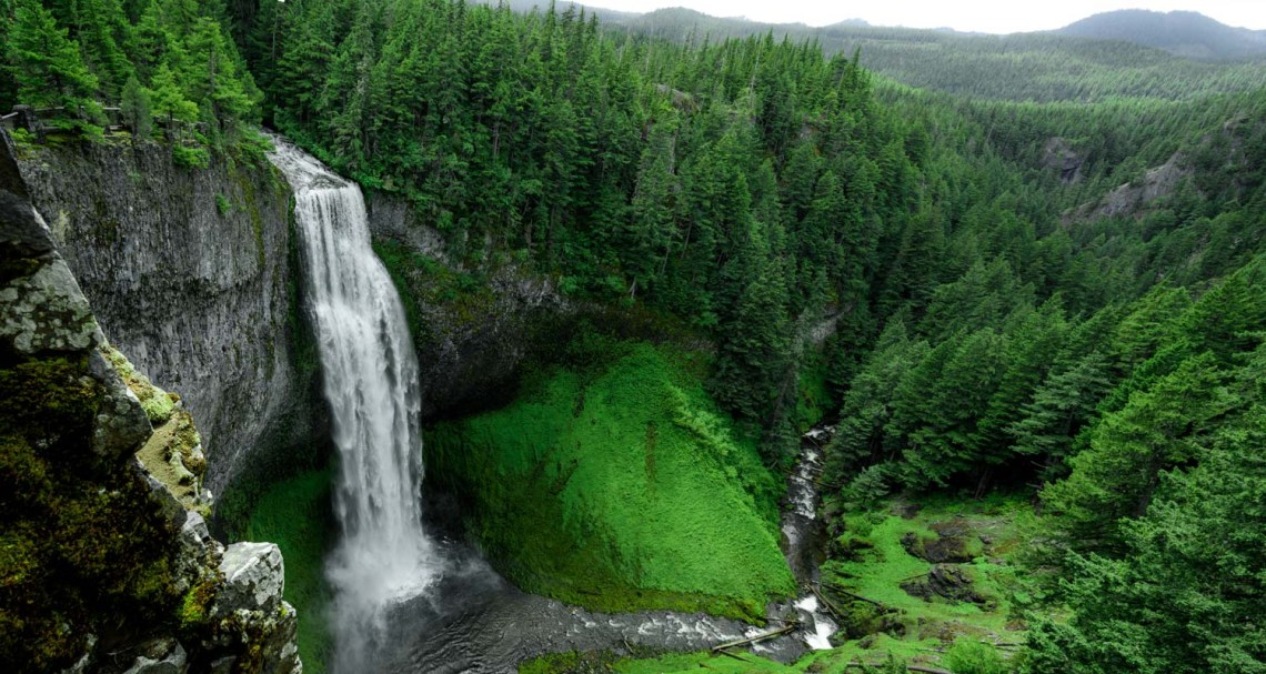 an aerial view of a tall waterfall surrounded by a green forest in Oregon