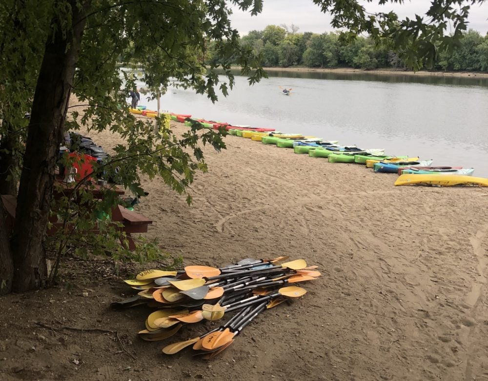 Kayak paddles on the sand in foreground, kayaks line the shore in background