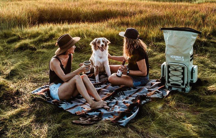 Two women with a dog enjoy a picnic during golden hour