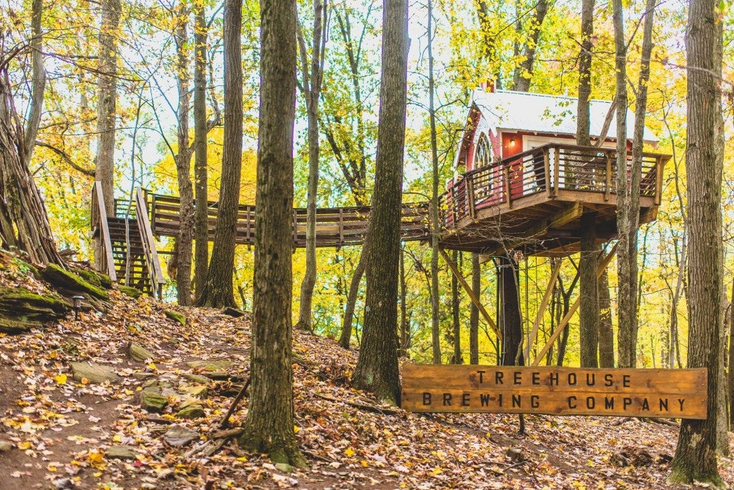 Red tree house with aerial bridge in a forest with yellow fall foliage