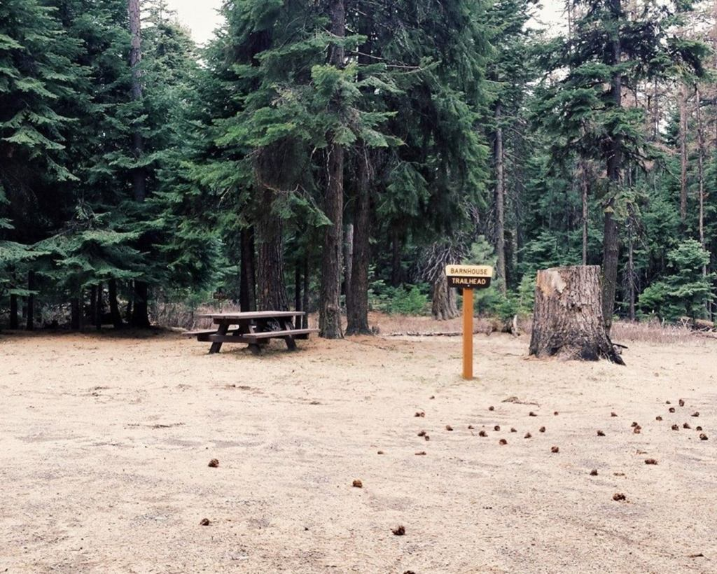 barnhouse trailhead marker visible beside wooden picnic table and large tree stump in oregon forest