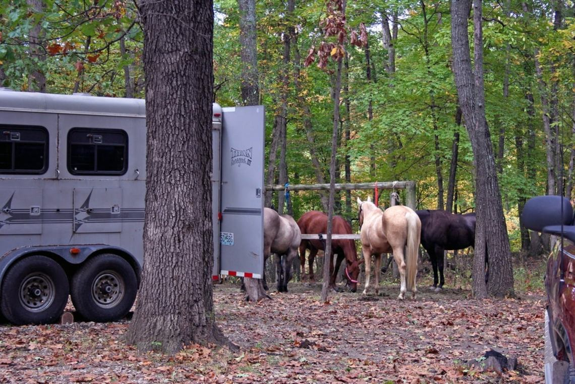 Group of horses tied up behind a trailer at the campsite.