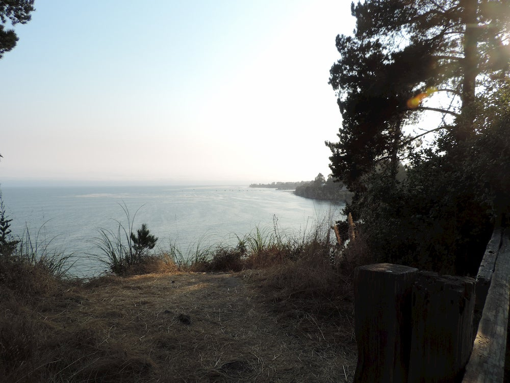 Panoramic view of ocean with trees and grassy campsite