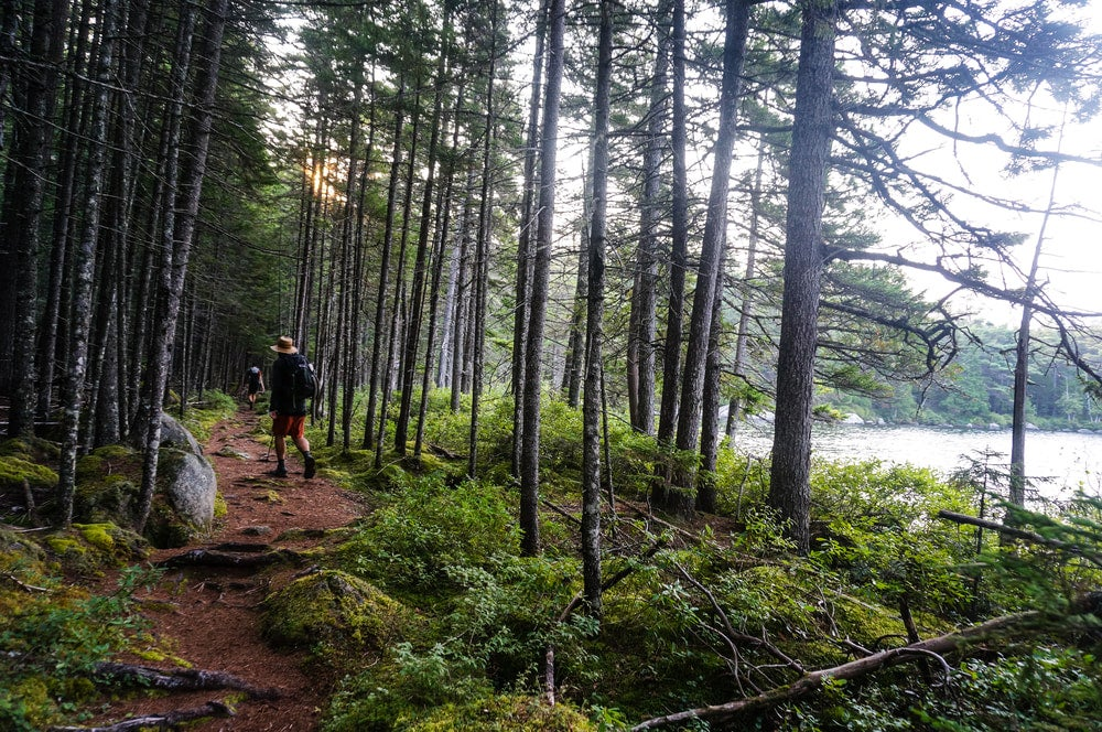 Thru-hiker walking along a forested trail next to a lake