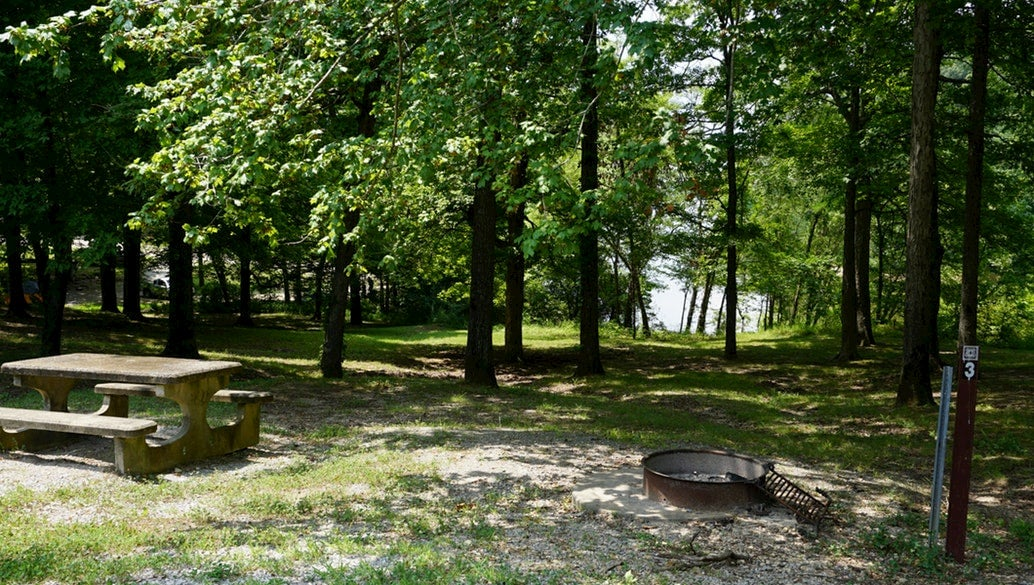 Campsite at Twin Lakes with fire pit and picnic table.