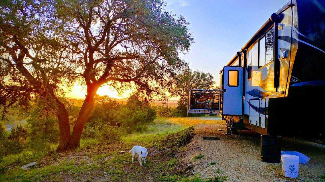 a dog near a parked RV in texas while the sun is setting in the background