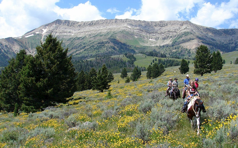 People riding horses in a meadow with mountains in the background