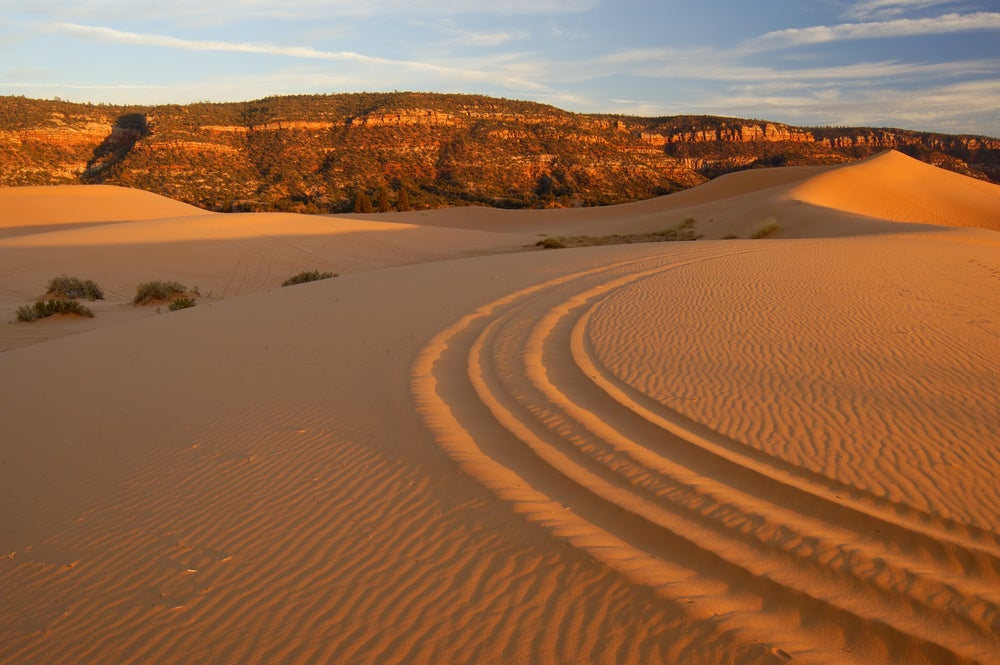 Sand Dune tracks in Coral Pink Sand Dunes.