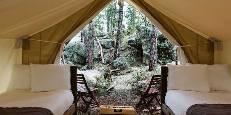 a tent with two cots and a mat in the woods of the black hills