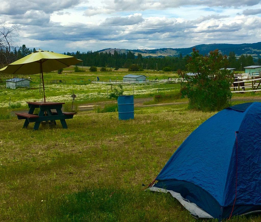 a tent on a field near a farm