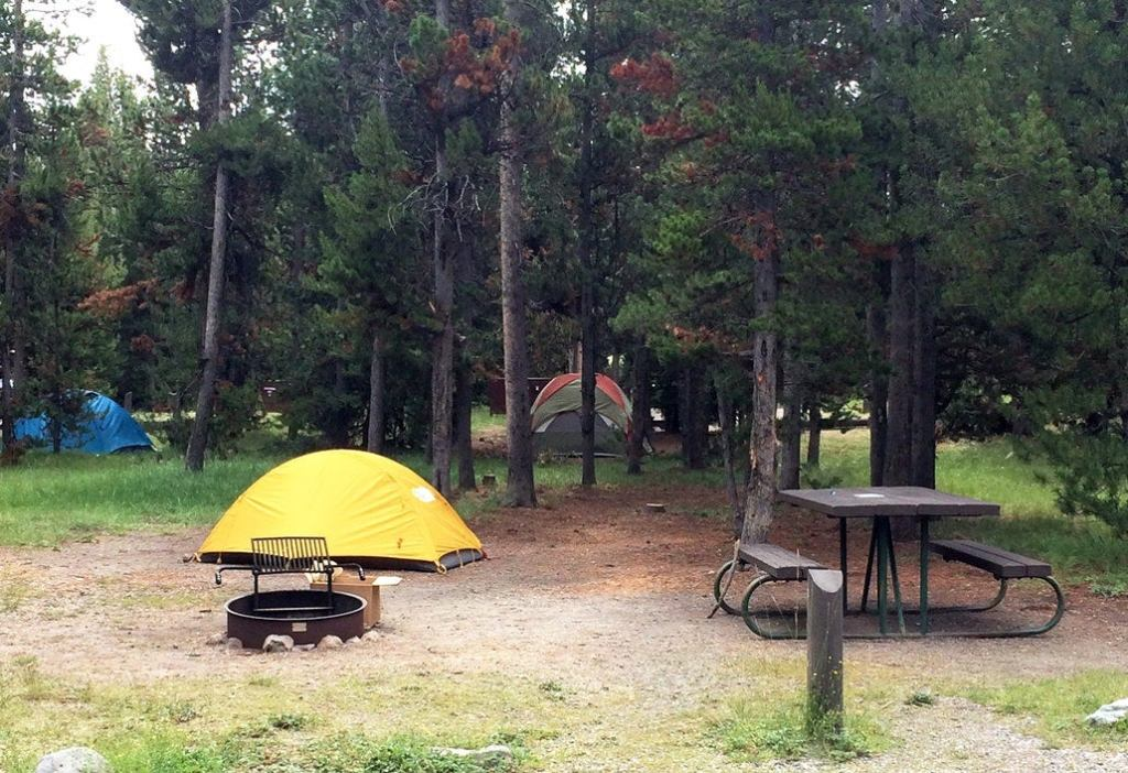 a campsite in yellowstone with a yellow tent