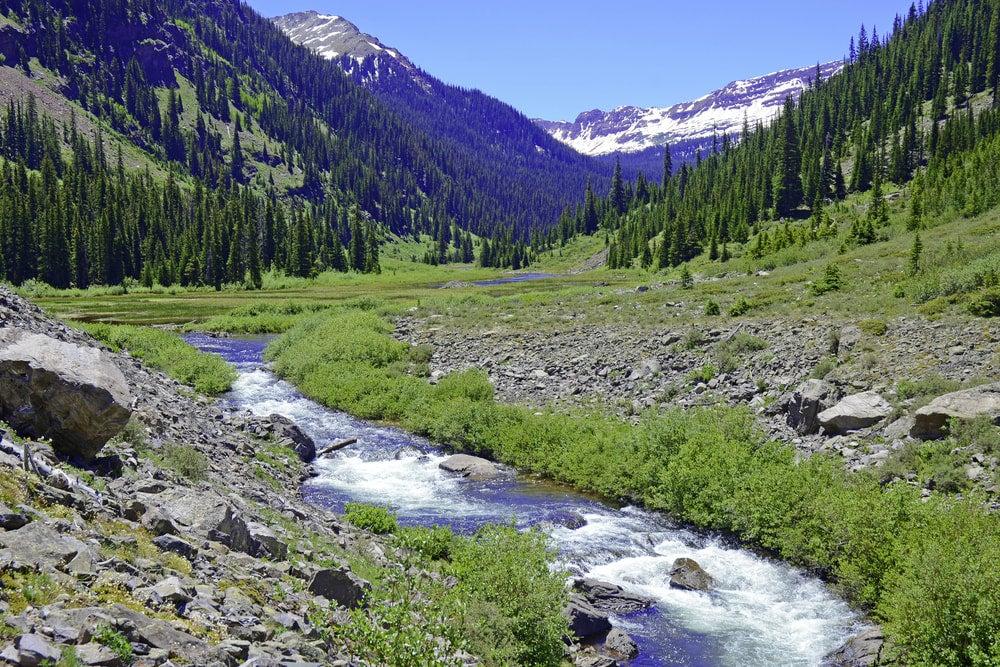 a stream in the elk range of colorado