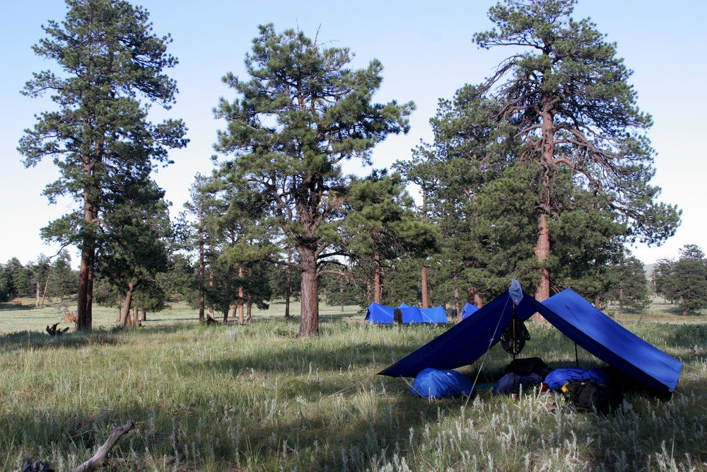 Tarp campsite in a tall grass field.