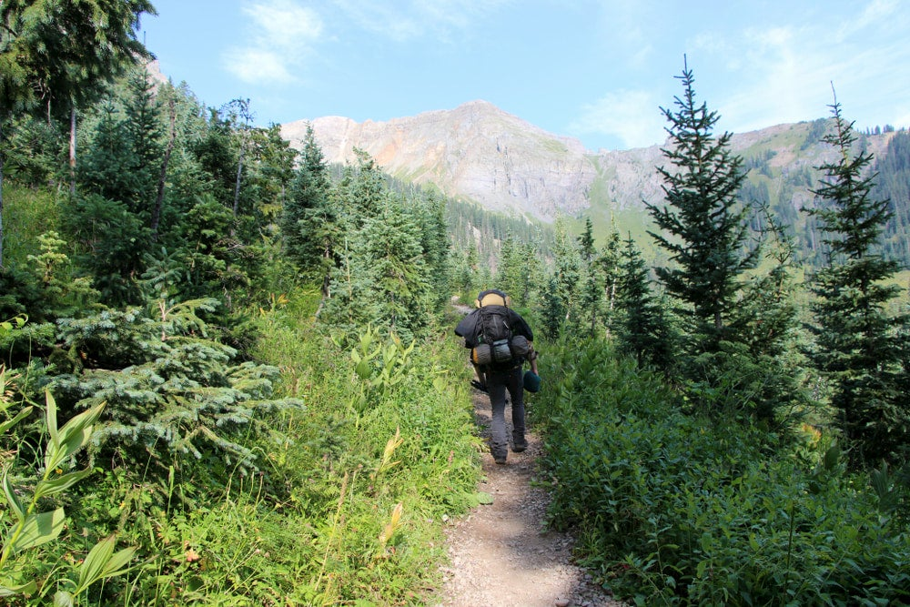 Backpacker walking through the forests in the backcountry of Colorado,