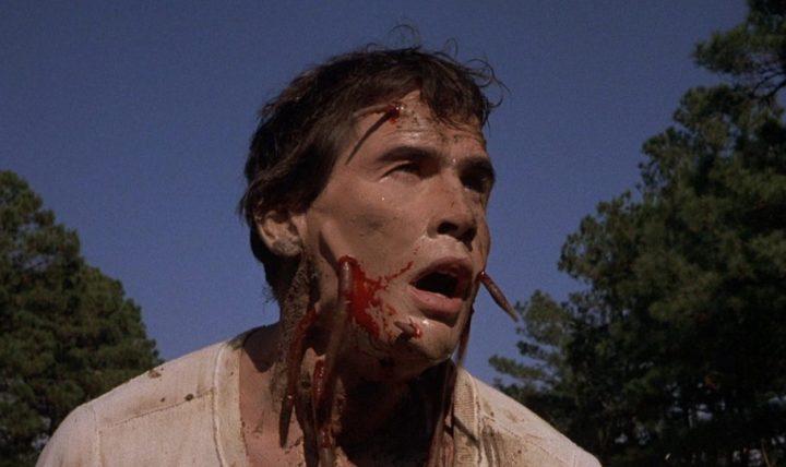 Squirm (1976) – Filmkritik