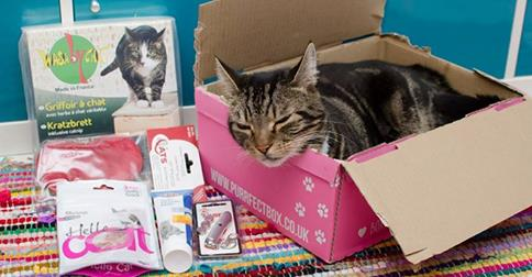 PurrfectBox: Box pour Chat