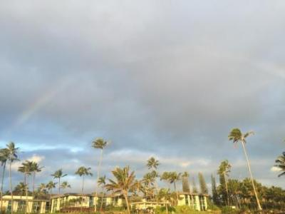 web Kauai 2017 006